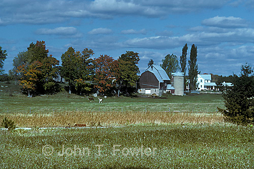 Rural landscape, Prince Edward, County, Ontario