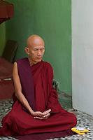 Monk meditating Shwedagon Pagoda, Yangon