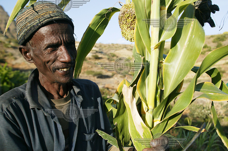 Farmer Yematain Deribein with his crops grown on an Oxfam agricultural scheme.