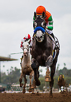 ARCADIA, CA - FEBRUARY 04: Reach The World with Mike Smith breaks his maiden at Santa Anita Park on February 4, 2017 in Arcadia, California. (Photo by Alex Evers/Eclipse Sportswire/Getty Images)