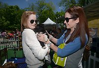 NWA Democrat-Gazette/BEN GOFF @NWABENGOFF<br /> Guests pet puppies up for adoption Thursday, May 4, 2017, at the Pedigry Puppy Village at Compton Gardens during the Bentonville Film Festival.