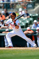 Baltimore Orioles second baseman Brian Roberts #1 at bat during a Spring Training game against the New York Mets at Ed Smith Stadium on March 30, 2013 in Sarasota, Florida.  (Mike Janes/Four Seam Images)