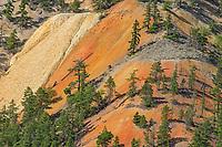 Drylands, Hat Creek, British Columbia, Canada