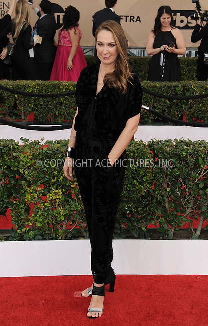 WWW.ACEPIXS.COM<br /> <br /> January 30 2016, LA<br /> <br /> Elizabeth Marvel arriving at the 22nd Annual Screen Actors Guild Awards at the Shrine Auditorium on January 30, 2016 in Los Angeles, California<br /> <br /> By Line: Peter West/ACE Pictures<br /> <br /> <br /> ACE Pictures, Inc.<br /> tel: 646 769 0430<br /> Email: info@acepixs.com<br /> www.acepixs.com