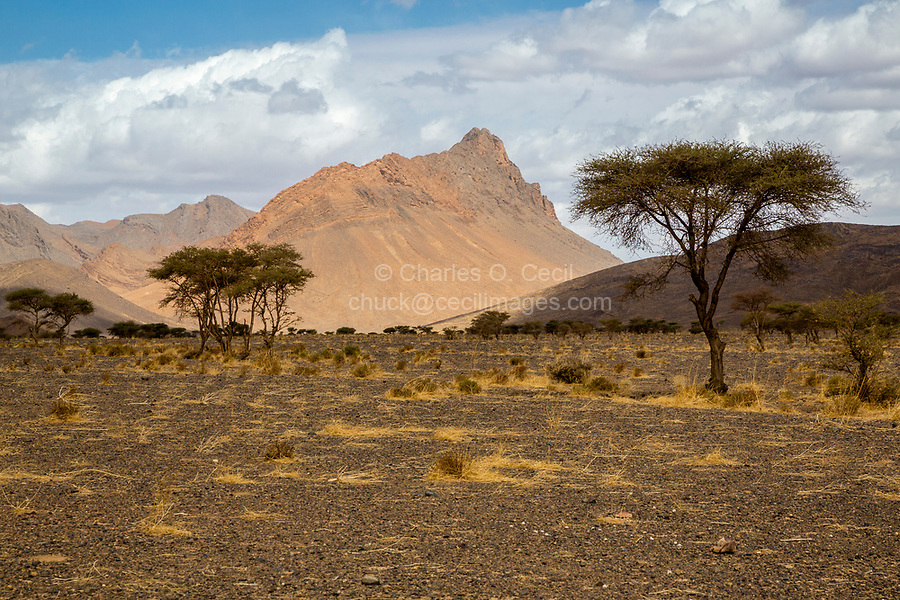 Tinghir Province, Morocco.  Landscape near Rissani.