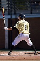 Right fielder Steven Brooks (1) of the Wake Forest Demon Deacons at bat versus the Clemson Tigers during the second game of a double header at Gene Hooks Stadium in Winston-Salem, NC, Sunday, March 9, 2008.