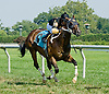 Inspired by Grace winning at Delaware Park on 8/27/14