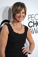 Allison Janney at the 2014 People's Choice Awards at the Nokia Theatre, LA Live.<br /> January 8, 2014  Los Angeles, CA<br /> Picture: Paul Smith / Featureflash