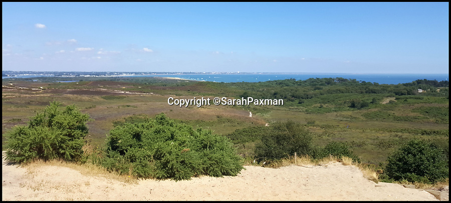 BNPS.co.uk (01202 558833)Pic: SarahPaxman/BNPS<br /> <br /> Studland - where the attack took place.<br /> <br /> A mother told today how her 10-year-old son ended up in intensive care after being bitten by a snake.<br /> <br /> Lewis Paxman was holidaying with family on the Isle of Purbeck in Dorset when a venomous adder slithered out of undergrowth and bit him on the left foot.<br /> <br /> The bite led his left leg to dramatically swell up and caused him to be sick.<br /> <br /> Lewis was rushed to hospital by ambulance where he was given anti-venom, painkillers and antibiotics admitted to intensive care.<br /> <br /> He spent five nights in hospital and even when he was released the swelling was still so severe he had use a wheelchair.