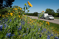 A trailer heads past blooming wild flowers down Highway 281 in Hill Country, Texas, on April 25, 2010. The historic highway offers many attractions including Fossil Rim Nature Park, many spring time flowers, and a wonderful view of hill country in central Texas...PHOTOS/ MATT NAGER