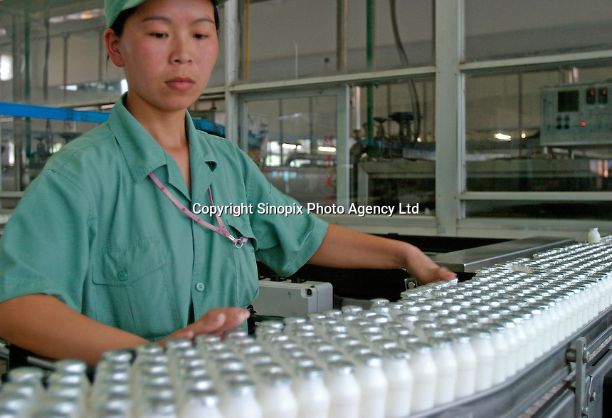 A woman works on the dairy drink bottling line at the Wahaha Beverage Manufacturing Base in Hangzhou, China. The privately owned Wahaha group is the largest beverage manufacturer in China with a total production of 3.75 million tons in assorted beverages last year. The group has recently decided to ship nearly 15 thousand cases of its Future Cola to the U.S..07-JUN-04