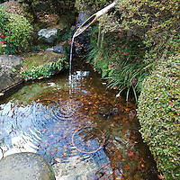 "Hokukuji Temple Water Fountain - sometimes call ""the Bamboo Temple"" because of its large bamboo grove was once the family temple of both the Ashikaga and Uesugi clans.  The temple and its gardens were established by Zen scholar and monk Tengan Eko, posthumously named Butsujo Zenji."