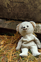 Teddy bear left at foot of tombstone, New Yor