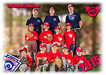 2015 Burlington American Reds