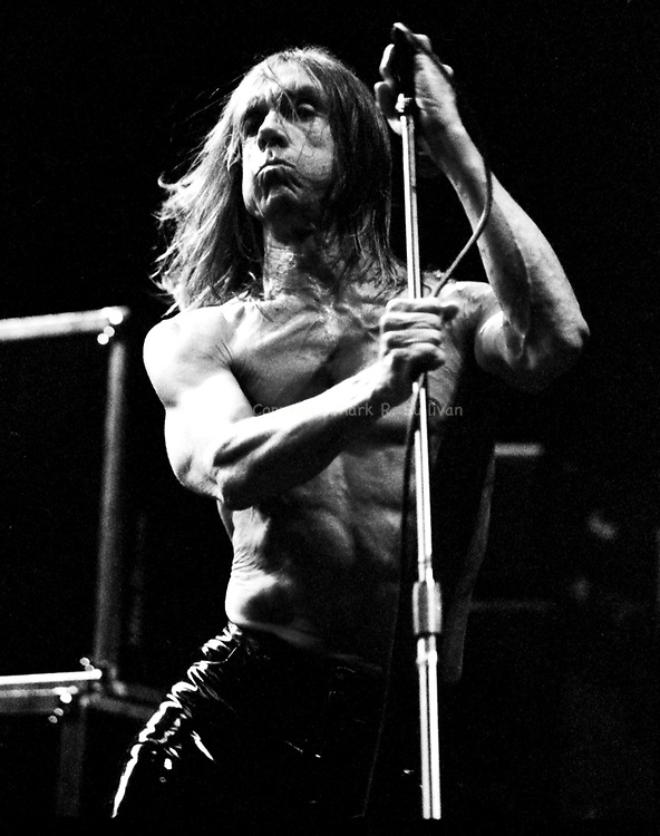 Iggy Pop.Tweeter Center.Camden, NJ.8/28/98