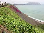 Peru, Lima, Miraflores - August 05, 2017 -- Photo © HorstWagner.eu