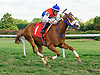 My Enigma winning at Delaware Park on 9/2/16