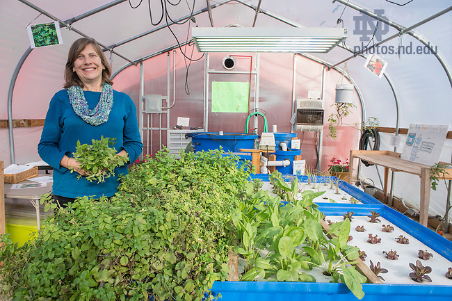 Dec. 4, 2015; Jan Pilarski inside the prototype greenhouse at Hannah and Friends in South Bend. (Photo by Barbara Johnston/University of Notre Dame)