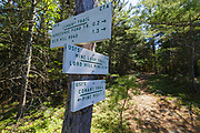 Trail junction of the Conant Trail and Mine Loop Trail on Lord Hill in Maine during the spring months. This loop trail travels over Pine Hill and Lord Hill. The Chatham Trails Association maintains these trails.