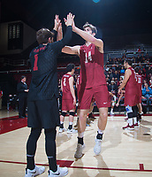 STANFORD, CA - March 2, 2019: Kyler Presho. Kyle Dagostino at Maples Pavilion. The Stanford Cardinal defeated BYU 25-20, 25-20, 22-25, 25-21.