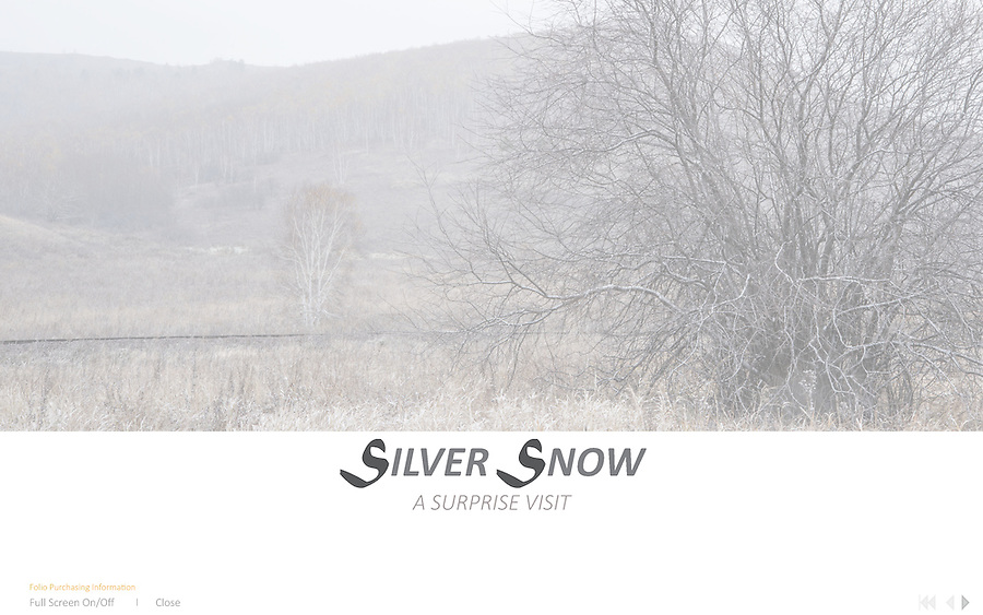 Silver Snow<br /> Deep into the countryside of A&rsquo;ershan, Inner Mongolia. I came across an open field one day. As I watched and observed, the scenery started to change. Almost magical and as time stood still, in the silent of the moment, then&hellip;