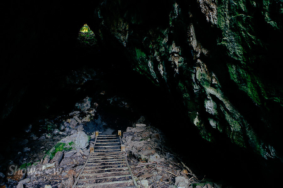 Image Ref: CA475<br /> Location: Mt Eccles National Park<br /> Date of Shot: 23rd November 2017