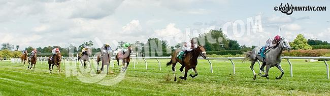 winning at Delaware Park on 9/1/14