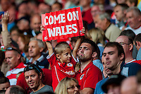 A young Wales fan looks on dejected after  their UEFA EURO 2016 Group B qualifying round match held at Cardiff City Stadium, Cardiff, Wales, 06 September 2015. EPA/DIMITRIS LEGAKIS