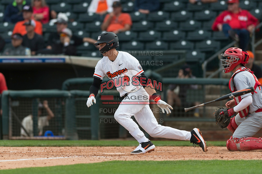 Oregon State Beavers shortstop Beau Philip (4) starts down the first base line during a game against the New Mexico Lobos on February 15, 2019 at Surprise Stadium in Surprise, Arizona. Oregon State defeated New Mexico 6-5. (Zachary Lucy/Four Seam Images)