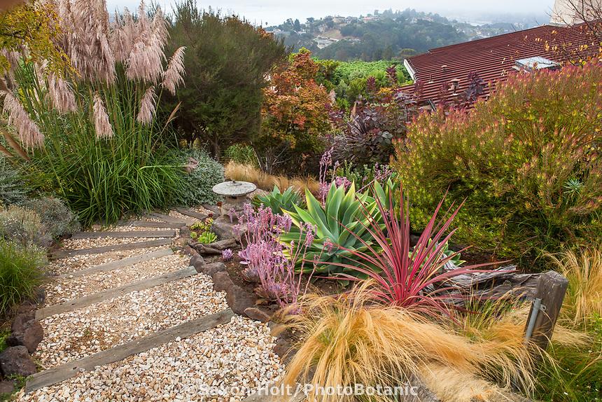 Gravel path through California summer-dry garden;