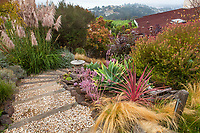 Gravel path through California summer-dry garden;