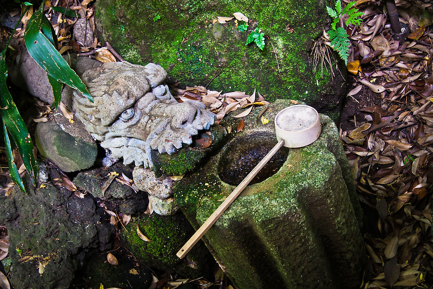 Stone Dragon`s head and ladle in Todoroki valley.