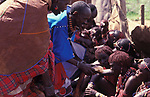 Maasai Moran have the fat from a sacrificial cow daubed on them (as well as taking a bite from it's flesh)  during  the ceremony that will bring them into manhood. <br /> Kajiado, Kenya.