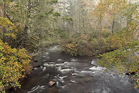 Little River in autumn, Dupont State Forest, near Brevard, North Carolina