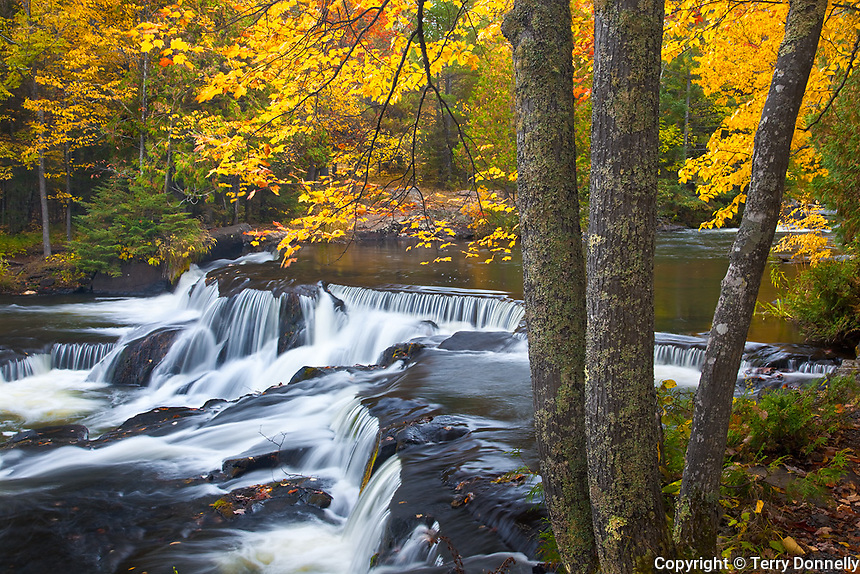 Bond Falls Scenic Site, MI<br /> Cascading waters over rock ledges on Bond Falls with fall colored forest, Ontonagon County
