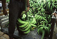 Colombia mercato banane
