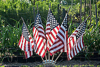 American flags adorn a community garden in summer, USA