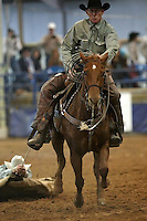 SAN ANTONIO, TX - FEBRUARY 22, 2009: The second annual South Texas Ranch Rodeo Finals held in Horse Barn #2 on the San Antonio Rodeo Grounds. (Photo by Jeff Huehn)