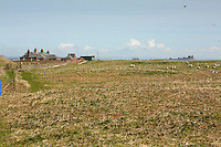 Visitor centre buildings at Walney Island Nature Reserve, Barrow in Furness, Cumbria, Uk