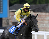 Hellavapace ridden by Rob Hornby goes down to the start of  The Crouch's Down Maiden Auction Fillies Stakes during Horse Racing at Salisbury Racecourse on 13th August 2020