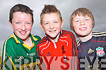 Darren Horan, Gavin Relihan and Darren Brown enjoying the Scor na nOg fun day in Brosna last Sunday.