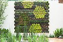 Living wall, RBC Blue Water Roof Garden, designed by Professor Nigel Dunnett, RHS Chelsea Flower Show 2013.