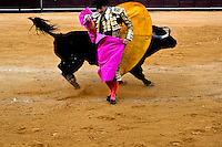 A Spanish bullfighter (matador) performs close to a bull at the bullring in Torremolinos, Spain, 28 July 2006.
