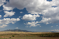 erath  160436 8/30/09-  The Southern Arizona wine country is located in Sonoita, about an hour south of Tuscon. The area is desert grasslands with sweeping vistas of the surrounding mountain ranges. (Pat Shannahan/ The Arizona Republic)