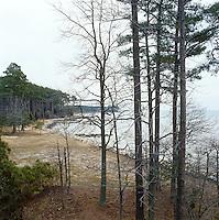 The wild coastline of Chesapeake Bay in Maryland
