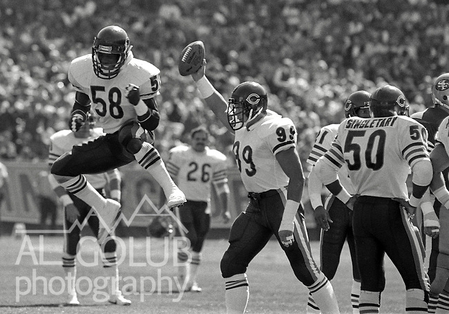 San Francisco 49ers vs. Chicago Bears at Candlestick Park Sunday, November 13, 1985..Bears beat the 49ers 26-10.Chicago Bears Defensive End Dan Hampton (99) and Bears Linebacker Wilber Marshall (58) celebrate taking ball from the 49ers...