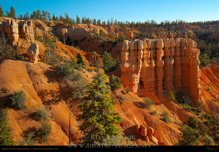 Fairyland Hoodoos at Sunrise, Fairyland Canyon, Bryce Canyon National Park, Utah
