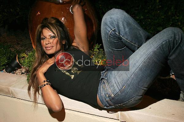 Traci Bingham<br />at a private photo session. L'Ermitage Hotel, Los Angeles, CA. 09-15-05.<br />Dave Edwards/DailyCeleb.Com 818-249-4998