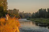 Nisqually River, WA.  Summer morning.  Photographer Tom Leeson.  This is right across river from Healey Property.