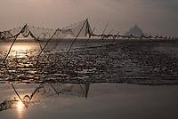 Europe/France/Normandie/Basse-Normandie/50/Manche/Env Saint-Michel-de-Montjoie: La baie du Mont Saint-Michel au soleil levant